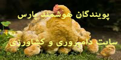 پویندگان هوشمند پارس